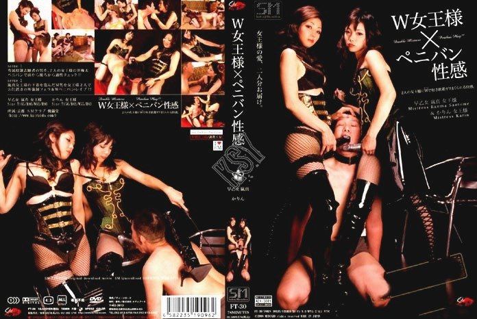 Transsexual vixens vol 13 dvd