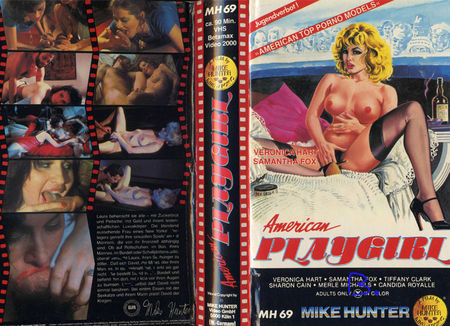 The Playgirl (1982)