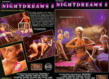 Night Dreams 3 (1990)