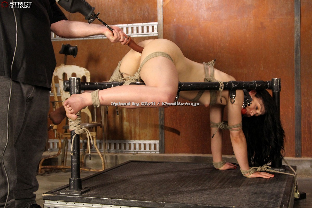 smotret-seks-video-bdsm