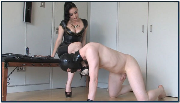 Team Slave Female Domination