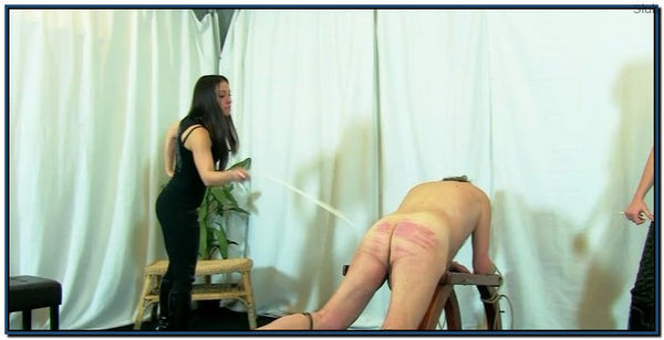 Torture Of The New Slave Female Domination